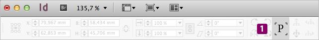 Screenshot – Spiegelungsstatus-Symbol in der Steuerungs-Palette