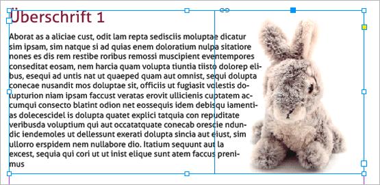 Screenshot – Datenzusammenführungs-Beispiel von Text und Bild mit Konturenführung
