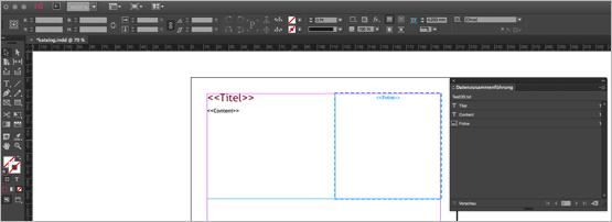 Screenshot – Template Text und Bild Rahmen für Datenzusammenführung