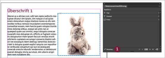 Screenshot – Datenzusammenführungs-Palette mit aktivierter Vorschau