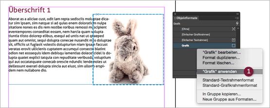 """Screenshot – Objektformate-Palette mit """"Grafik anwenden"""" Befehl"""