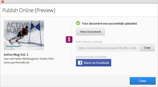 Screenshot – Publishing Online (Preview)