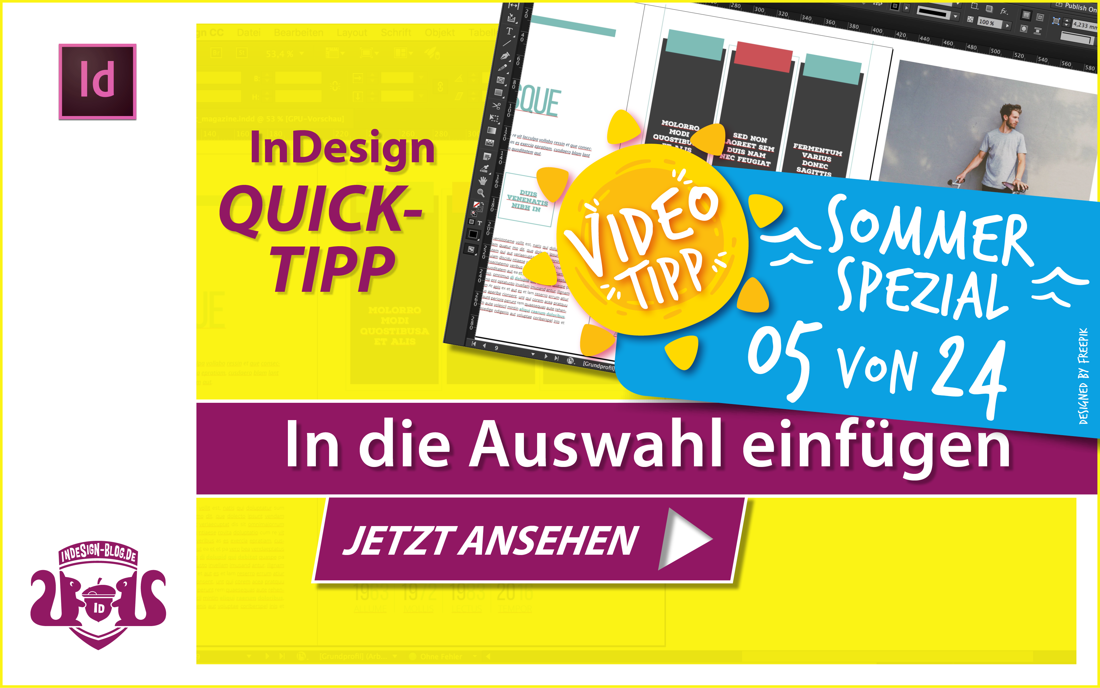 Screenshot – Video In die Auswahl einfügen in InDesign