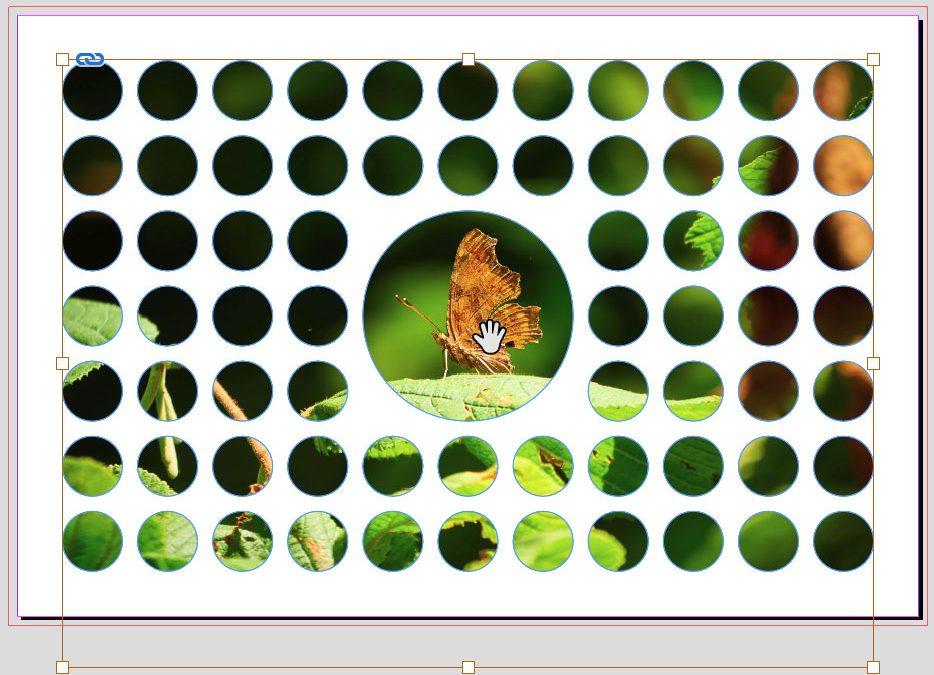 Ein Bild in mehreren InDesign Rahmen platzieren